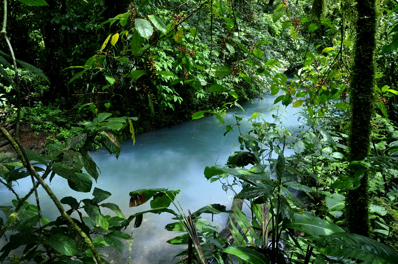Rio Celeste : un cours d'eau à la couleur étrange