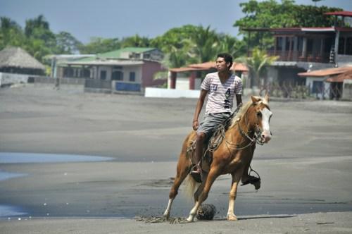 Las Penitas-cheval