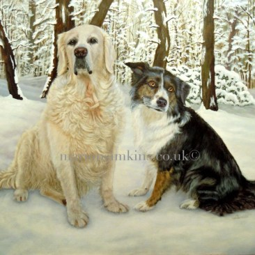 Commissioned pet portrait oil painting of a Golden Retriever & Border Collie sitting in a snowy woodland setting
