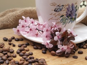 coffee-beans-759000_1280