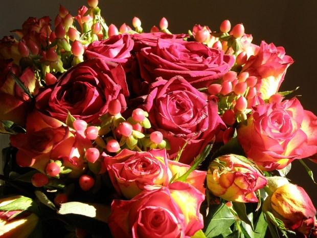 rose-745456_1280