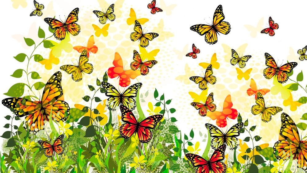 Image result for imagenes de muchas mariposas volando