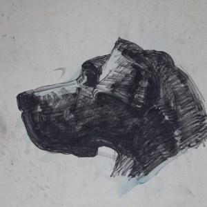 D-029 – 1955 Mijn vrouw en haar hond