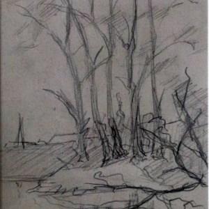 D-070 – Bomen