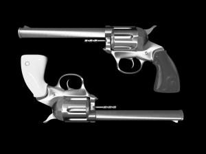 Some Good Reasons Against Gun Control (1)