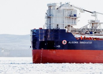 USCG: Containership Crew Finds Three Stowaways 3