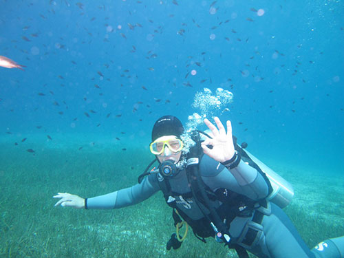 Scuba diving as a career
