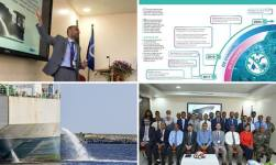 The Key In IMO's Ballast Water Management Is To Identify Marine Life