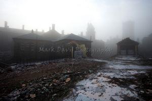 misty-c78.jpg