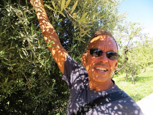 Jim discovers olives, Agrigento