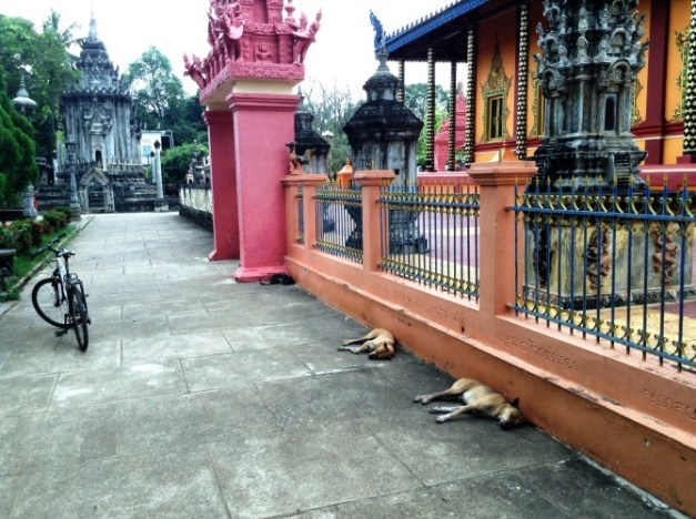 Mark and I weren't the only lazy ones in Battambang...