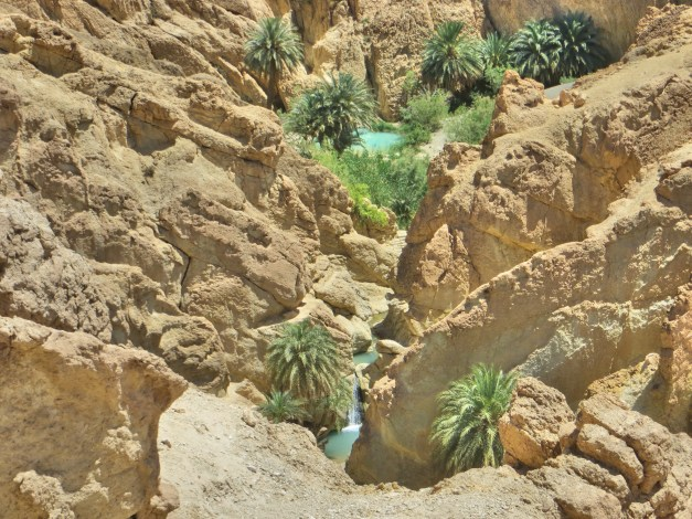 This is the oasis at Chebika. You can see a little pool and waterfall down in the canyon where we would soon be swimming.