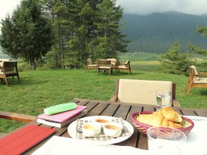 Breakfast on the back lawn of our lodge with sweeping views of the valley