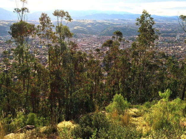 A view of Sucre from another trail that took me high above the city