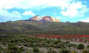 La Bella Tunupa, with a quinoa field in the foreground.