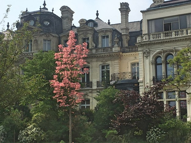 More grand buildings and beautiful trees