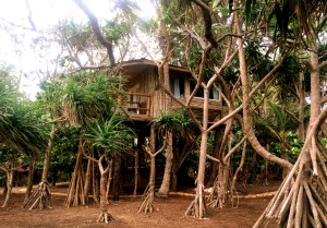 Our treehouse, around the back of the island, private and with stunning views, was a heavenly place to relax