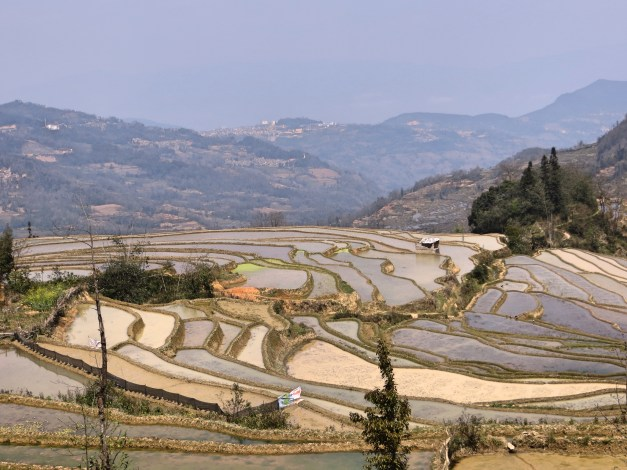 And more rice terraces