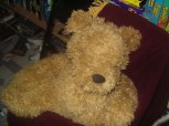 George The Bear