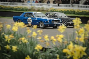 Ford Mustangs Racing