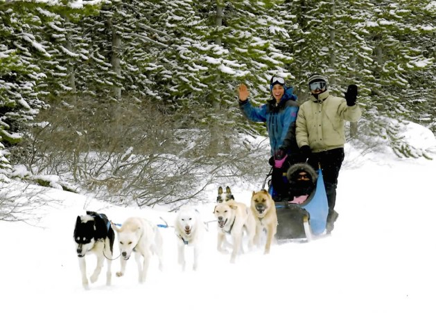 dog-sledding-in-canmore 2