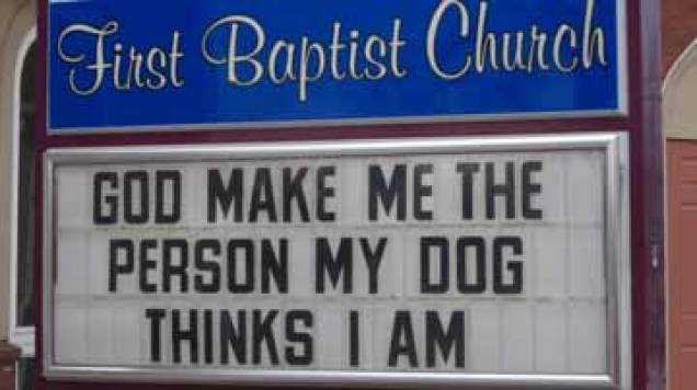 person my dog thinks I am