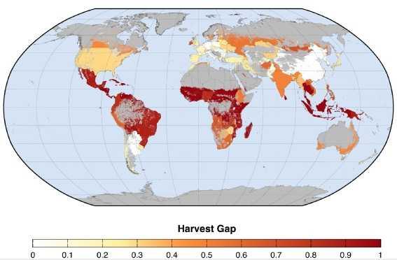 harvest gap
