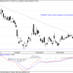 USDINR Supports got broken