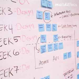 plan timelines and milestones in project management