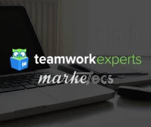 Teamwork Expert   Project management expert