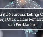 Apa itu Neuromarketing? Cara Kerja Otak Dalam Pemasaran dan Periklanan