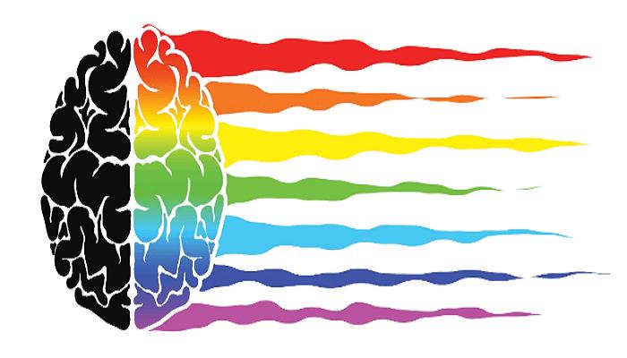 Psikologi Warna Memengaruhi Strategi Konten