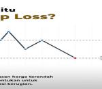 Pengertian, Cara Menggunakan Stop Loss dan Take Profit di Forex, Saham, ETC