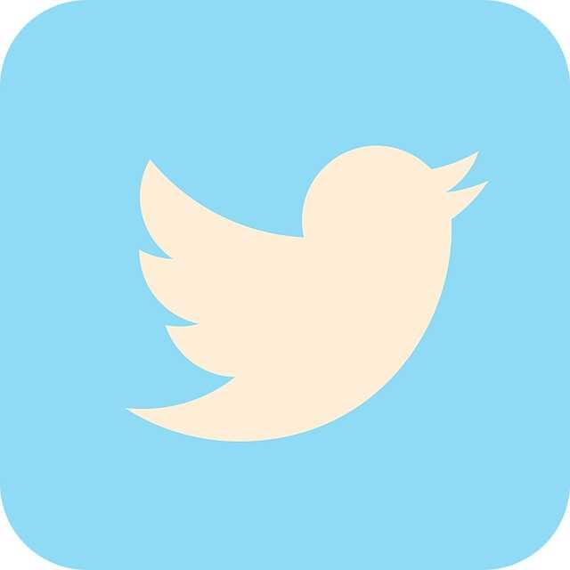 Suggestions pour l'utilisation de Twitter pour le marketing