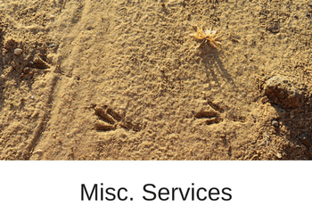 Misc. Services