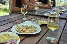degustazione di vino - da Pixabay
