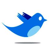 6 conclusiones sobre las entradas en Twitter sobre el iPad