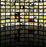 El 46% de los comerciantes online en Estados Unidos utiliza el vídeo online