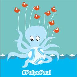 Las redes sociales encumbran al estrellato al pulpo Paul