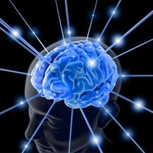 Las preferencias del consumidor están grabadas en sus neuronas