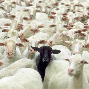 """Europa es la """"oveja negra"""" de la inversión publicitaria global"""
