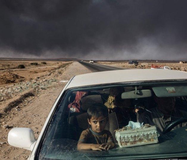 Estas 30 soberbias fotos son las ganadoras de los Oscar de la fotografía de Sony