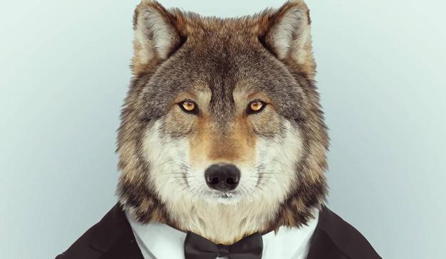 Tras verle las orejas al lobo, las agencias echan a correr. ¿Tarde?