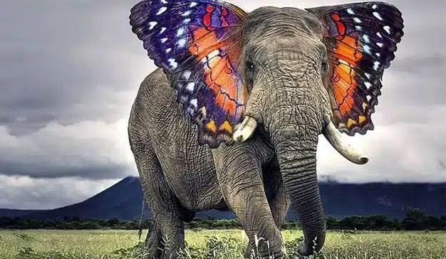 Como un elefante en una cacharrería: así irrumpirá la inteligencia artificial en el trabajo