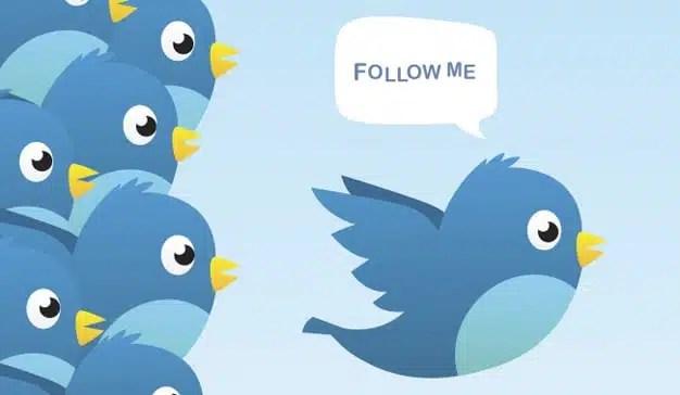Twitter, la más perjudicada por la eliminación de followers en su red social