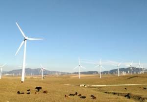 Website Design For Renewable Energy Companies