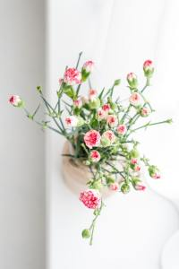 Compare Quotes On Advertising For Florists
