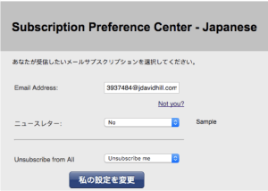 japanese-email-center-form-example