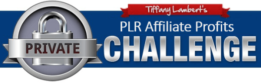 PLR Affiliate Profits Challenge