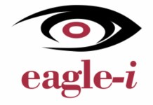 Eagle-i Introduces Alternative HD CCTV Cameras Into Nigerian Market-marketingspace.com.ng